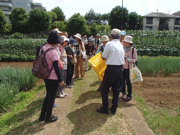 宮前区-「第20回農家巡りウォーキング」開催!